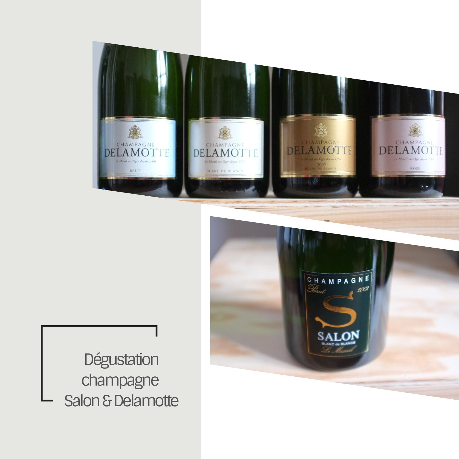 Dégustation Champagnes Salon Delamotte | L\'astringent.