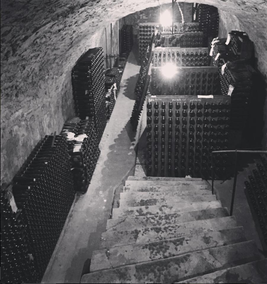 Fallet prevostat cellar